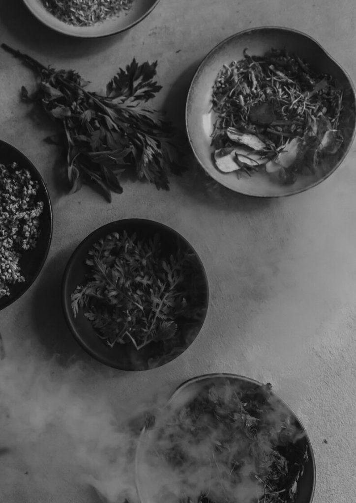 Plates of various healing and magickal plants, with moody smoke