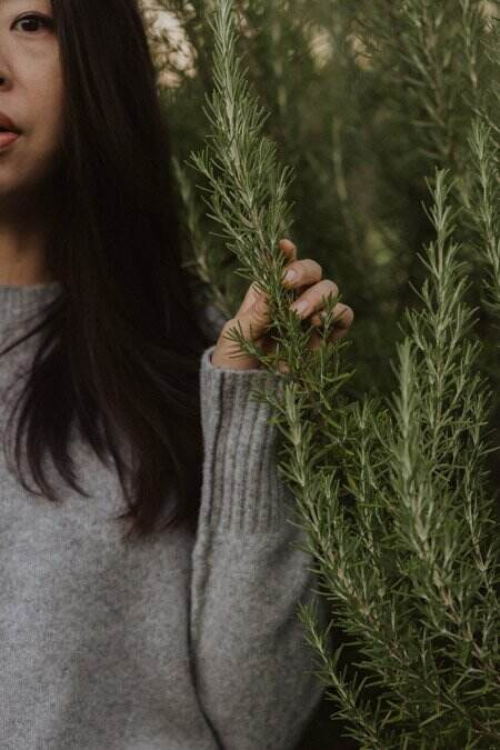 Cropped image of Asian woman holding a branch of a Rosemary bush