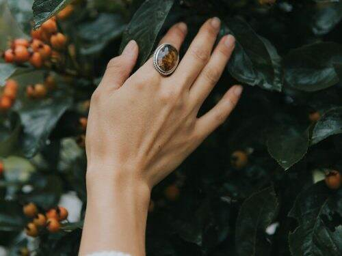 Hands with large pietersite ring reaching towards rosehips