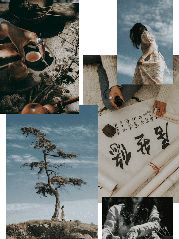collage of tree, Taiwanese woman in yellow dress, tea, mugwort, yarrow (shaman's flower), and chinese calligraphy